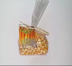Koruza v zrnu – semenski material
